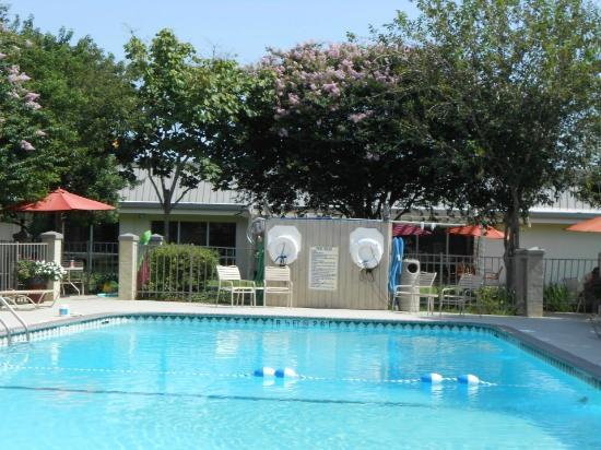 Ramada New Iberia: Pool surrounded by grass, trees, and plants
