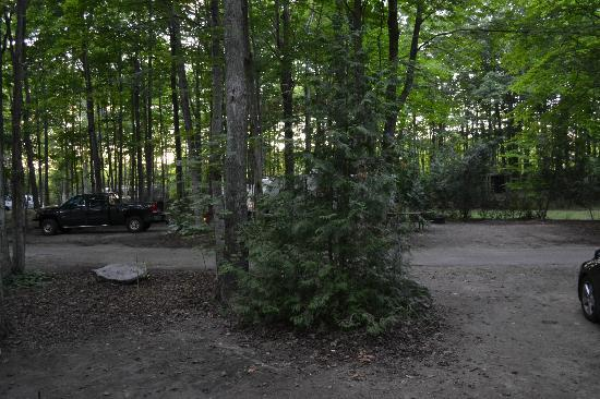 Sauble Falls Provincial Park: Our campground at sauble falls