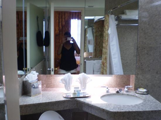 Bathroom picture of hotel monteleone new orleans for Bathroom new orleans