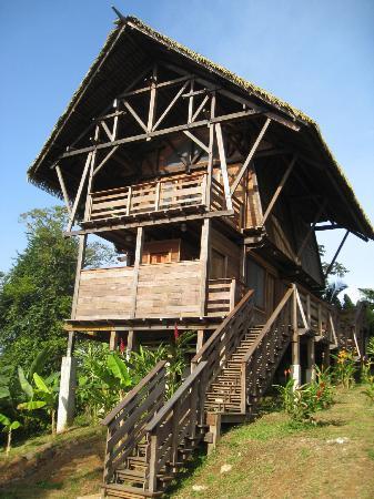 Red Frog Beach Island Resort & Spa: The Jungle Lodge