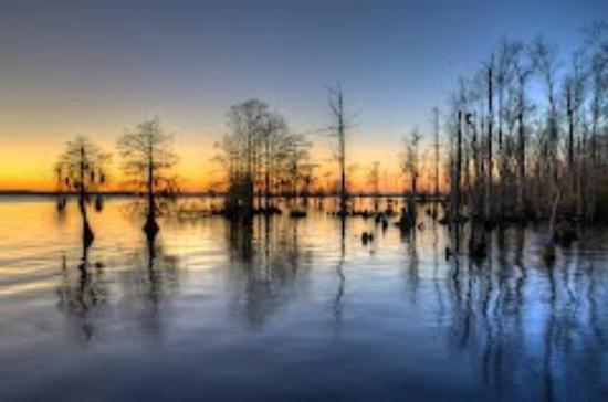 Edenton, Carolina del Nord: filename__71420942_jpg_thumbnail0_jpg