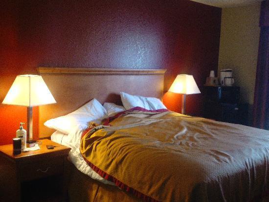 Rodeway Inn and Suites: Hypoallergenic linens