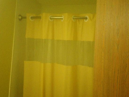 Rodeway Inn and Suites: The bathroom could use renovations.