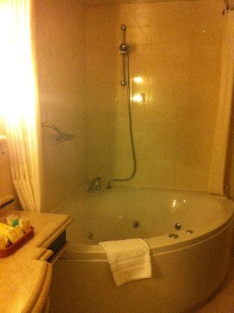 Lexington Gloria Hotel Doha : Bath and shower in one
