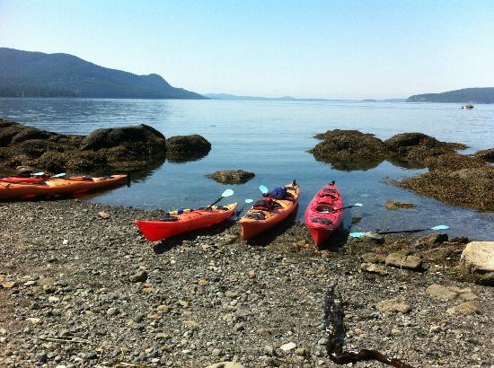 Otters Pond Bed and Breakfast: Kyaking with Outer Island Expeditions...