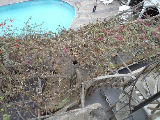Hotel Sol de Ica: vista del balcón de la habitación