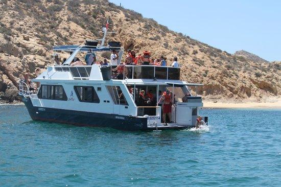 Sunrider Adventure Tours: Snorkelinf in Santa Maria Fun