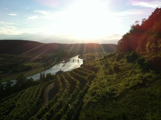 Hotel Restaurant Burg Hornberg: Ausblick ins Tal