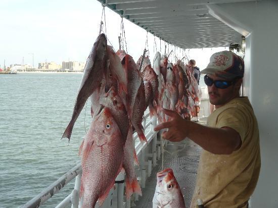 Galveston, TX: Everyone Caught Fish