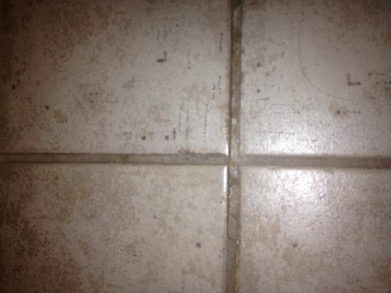 Staybridge Suites Lubbock: Missing Grout In Floor Tiles