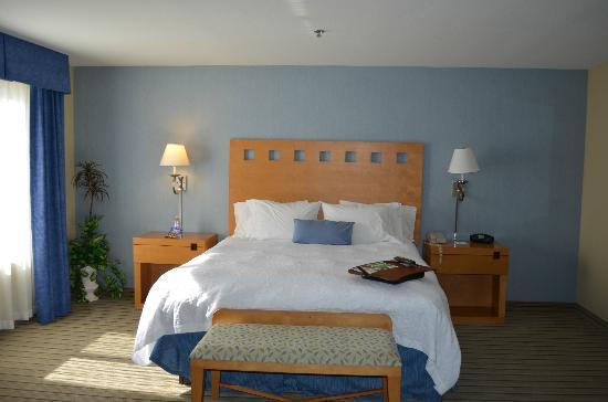 Hampton Inn & Suites Madera : King Bed