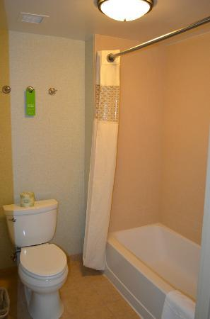 Hampton Inn & Suites Madera : Bathroom/Shower