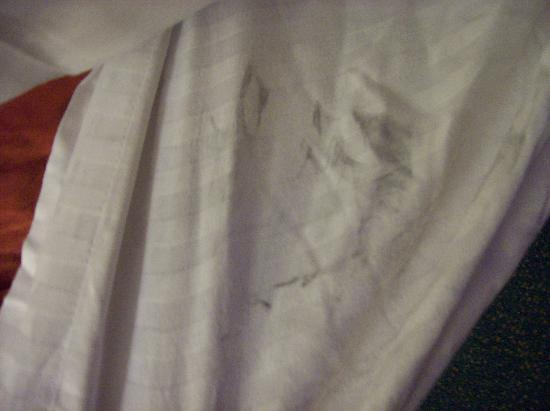 Baymont Inn & Suites Springfield: Grease-like stain on bed sheet