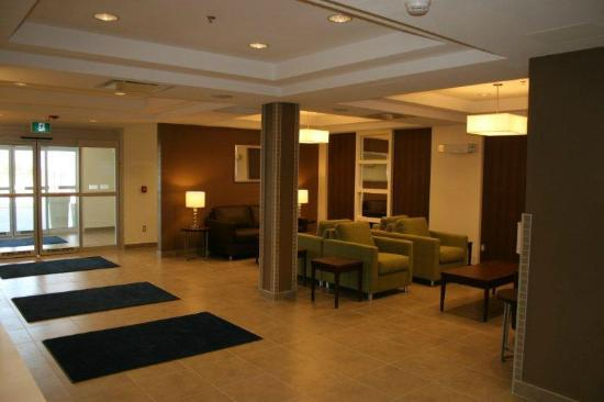 Holiday Inn Express Deer Lake : Lobby/waiting area