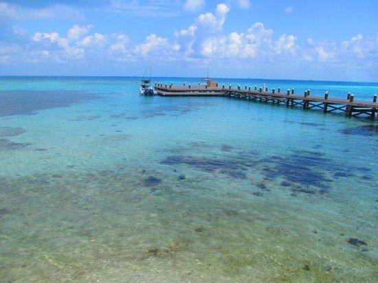Hatchet Caye Resort: North pier