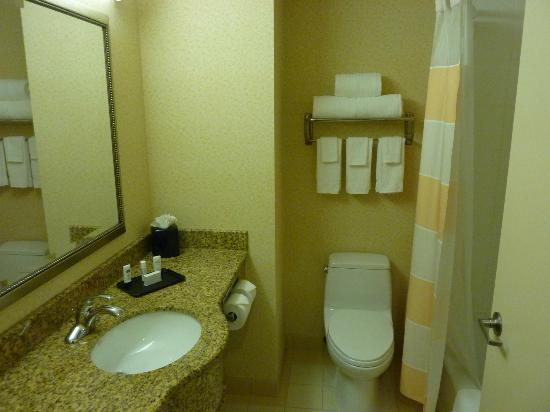 Fairfield Inn New York LaGuardia Airport/Astoria: Bathroom