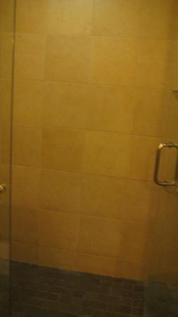 The Hotel at Auburn University: Large shower