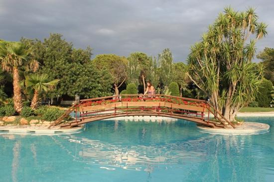 Playa Montroig Camping Resort: Pool Area