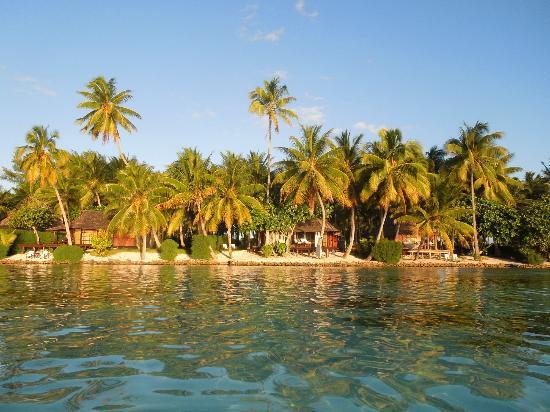 Vahine Private Island Resort: Arriving at Vahine
