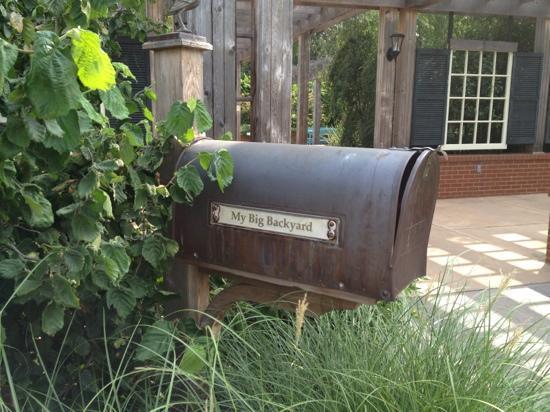 My Big Backyard - Picture of Memphis Botanic Garden ...