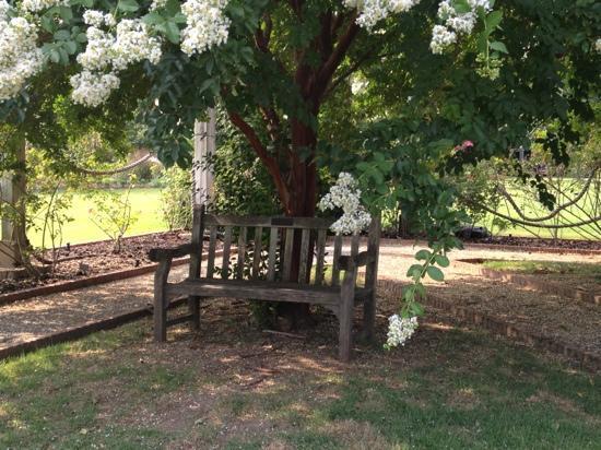 Memphis Botanic Garden : MBG Wooden Bench