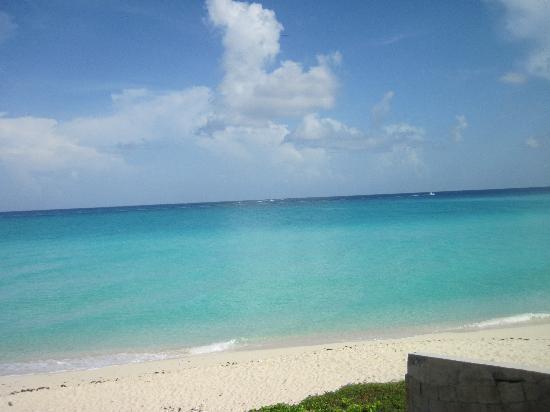 WildQuest : Ocean Side Beach