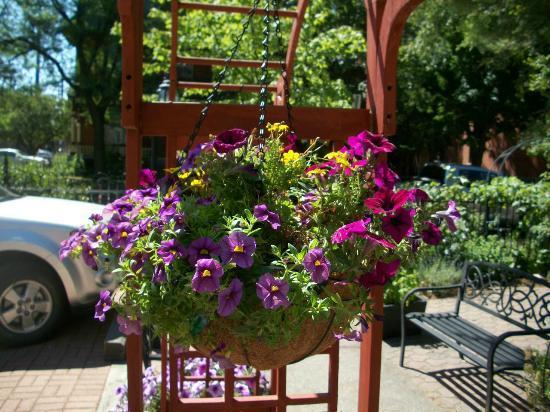 Auberge McGee's Inn: Flower Garden