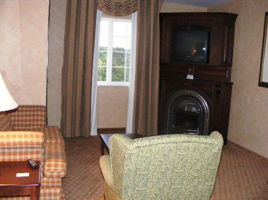 Irish Cottage Boutique Hotel: living area/tv/fireplace-fake
