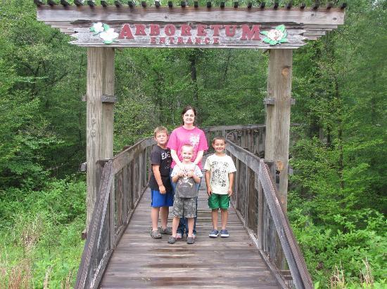 Louisiana State Arboretum: Entrance