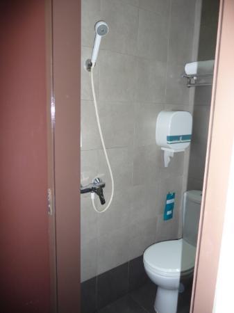 Hotel 81 Balestier: Shower next to the toilet