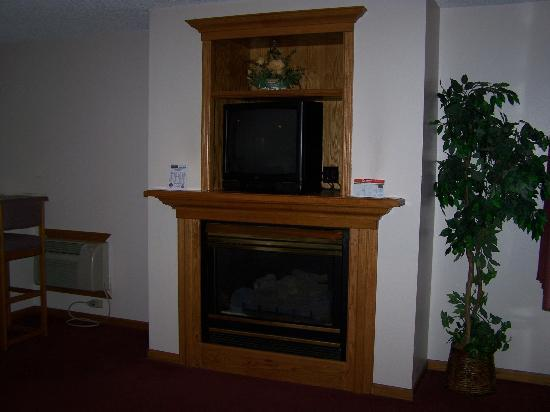 Hall of Fame Hotel: TV and Fireplace