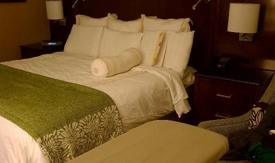 Tysons Corner Marriott: Nice big bed, Lots of Pillows, no walking room!