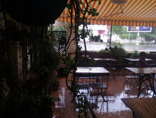 Garden Cafe: view on a rainy day