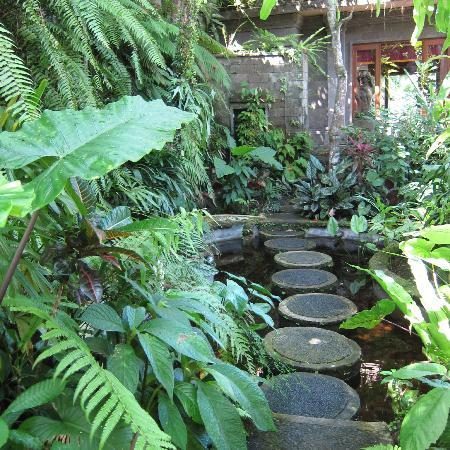 ONEWORLD retreats Kumara: Walking around the grounds