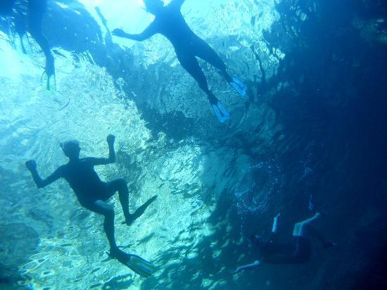 Sant'Angelo, Italia: snorkeling nei migliori  siti di Ischia, selezionati dai nostri operatori