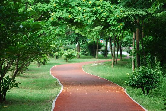 Oakwood Gold Arch Residence Guangzhou : Park & Jogging Track