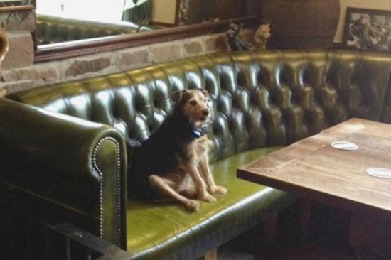 Pentre Riding Stables: Visit the Ancient Briton Pub just down the road