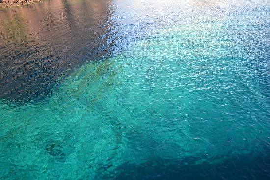 Colombo Line : Les fonds marins turquoises aux pieds des calanques de Scandola