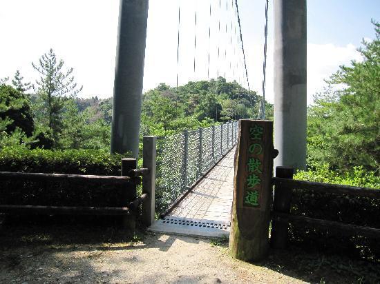 Shizuoka Prefectural Forestpark: 吊橋
