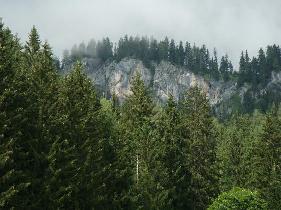 Dachstein Sudwand: In the back of the farm