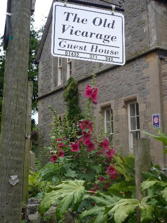 the old vicarage: Hollyhocks
