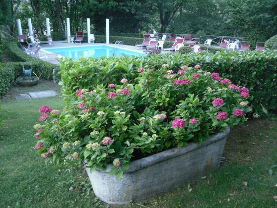 Park Hotel Fantoni: piscina