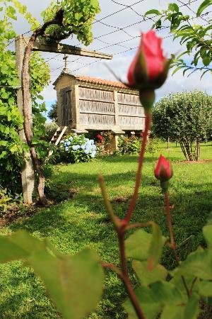 Os Miguelinos: jardín