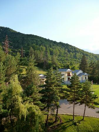 Hotel Dilijan Resort: The View