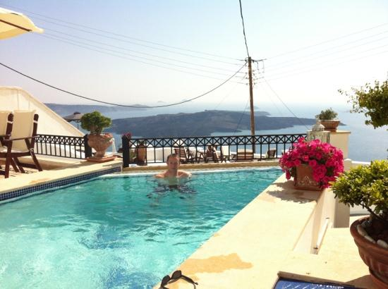 Lithies Traditional Homes: amazing pool view
