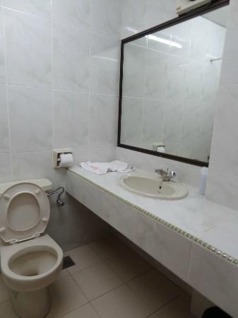 Greenland Inn: bathroom