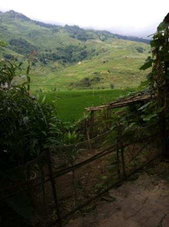 Sapa O'Chau Cafe: view from Mai's House (Sapa O'Chau Homestay)