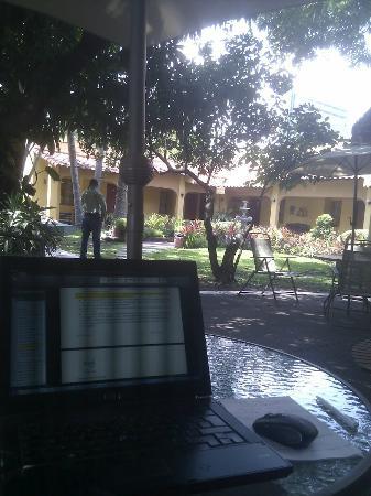 Hotel Mediterraneo Plaza: Working in the garden