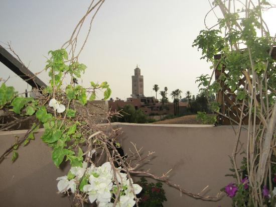 Riad Viva: View from roof terrace