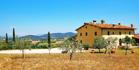 Il Guglierallo B&b: Lage des Hauses und Aussicht